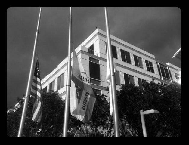 Опущенные флаги в Купертино