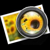 Focus app logo